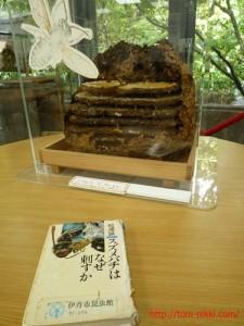 スズメバチの本